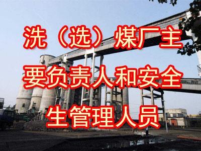 洗(选)煤厂主要负责人和安全生管理人员